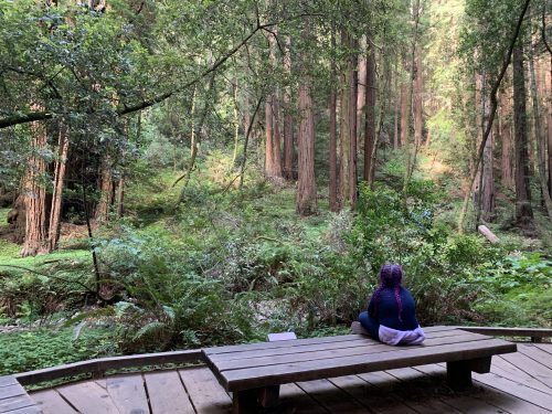 Girl with Redwoods